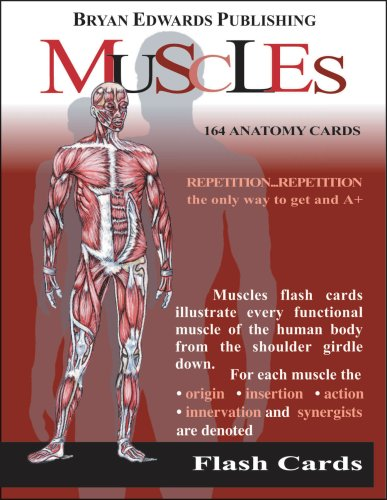 Muscles Flash Cards  1989 edition cover
