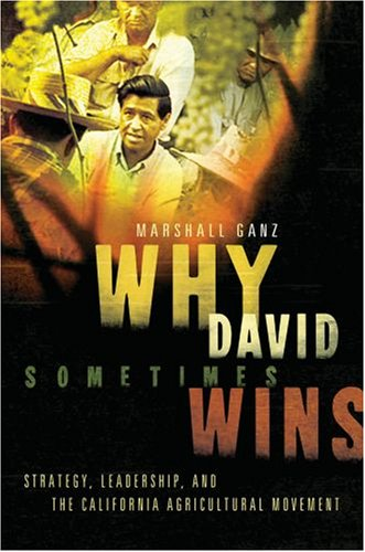 Why David Sometimes Wins Leadership, Organization, and Strategy in the California Farm Worker Movement  2009 9780195162011 Front Cover