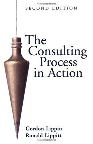 Consulting Process in Action  2nd 1986 (Revised) edition cover