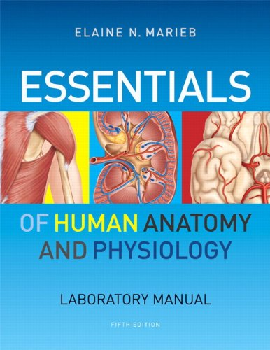 Essentials of Human Anatomy and Physiology Laboratory Manual  5th 2012 edition cover