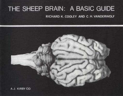 Sheep Brain : A Basic Guide 1st edition cover