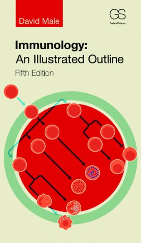 Immunology An Illustrated Outline 5th 2014 (Revised) edition cover