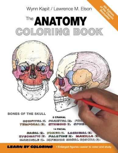 Anatomy Coloring Book  4th 2014 edition cover
