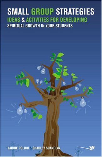 Small Group Strategies Ideas and Activities for Developing Spiritual Growth in Your Students  2005 edition cover