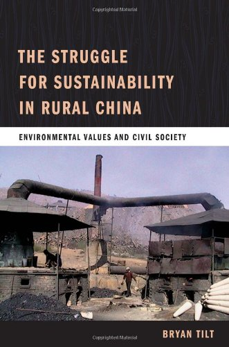 Struggle for Sustainability in Rural China Environmental Values and Civil Society  2009 edition cover