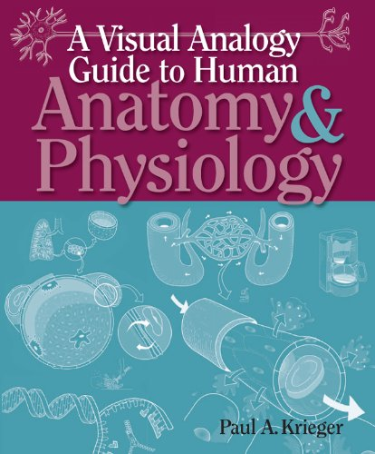 Visual Analogy Guide to Anatomy and Physiology  2009 edition cover