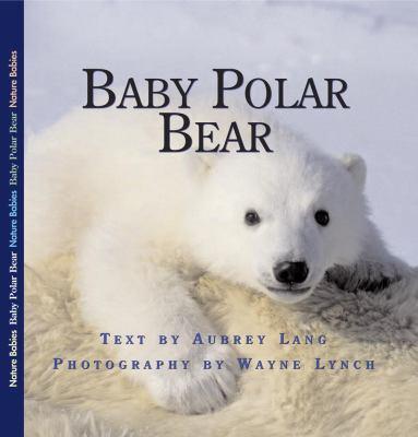 Baby Polar Bear   2008 9781554551019 Front Cover