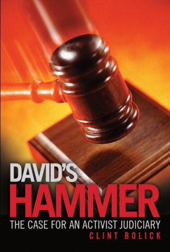 David's Hammer The Case for an Activist Judiciary  2007 edition cover