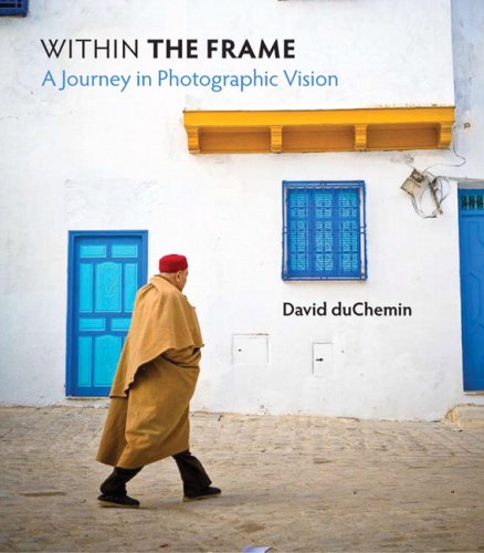 Within the Frame The Journey of Photographic Vision  2009 edition cover