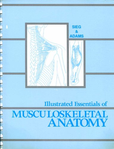 Illustrated Essentials of Musculoskeletal Anatomy  3rd 1996 (Student Manual, Study Guide, etc.) edition cover