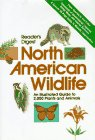North American Wildlife An Illustrated Guide to 2,000 Plants and Animals  1982 edition cover