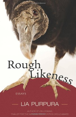 Rough Likeness Essays  2011 edition cover