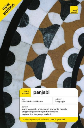 Teach Yourself Panjabi  3rd 2008 (Revised) 9780071547031 Front Cover