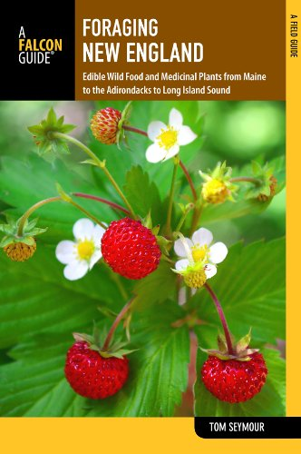 New England Edible Wild Food and Medicinal Plants from Maine to the Adirondacks to Long Island Sound 2nd edition cover