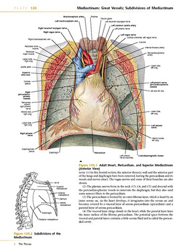 Anatomy A Regional Atlas Human Body 5th 2006 (Revised) 9780781751032 Front Cover