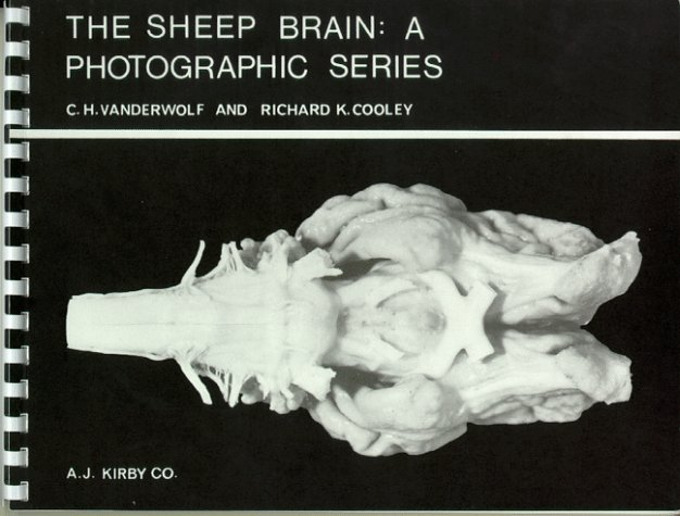 Sheep Brain 2nd edition cover