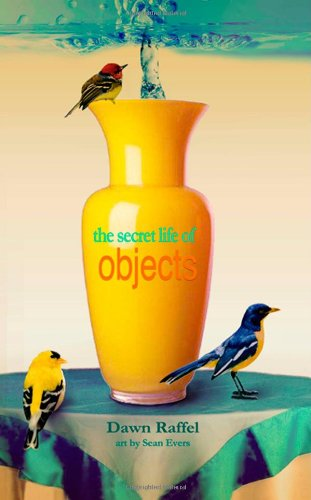 Secret Life of Objects A Memoir  2012 edition cover