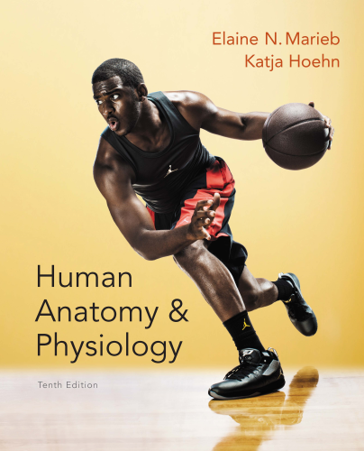 Human Anatomy & Physiology:   2015 edition cover