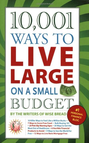 10,001 Ways to Live Large on a Small Budget   2009 edition cover