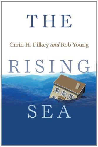 Rising Sea   2011 edition cover