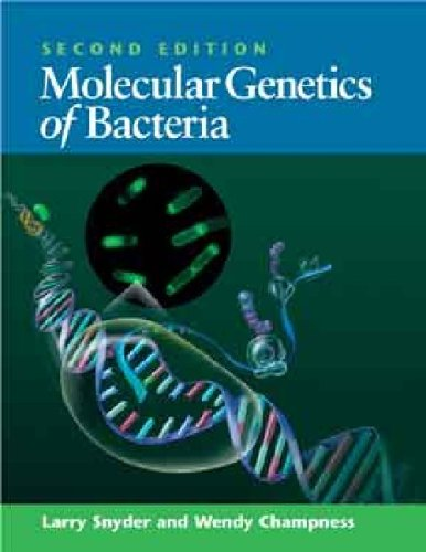 Molecular Genetics of Bacteria  2nd 2003 (Revised) edition cover