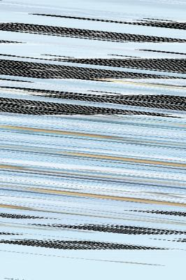 Tid Bits : A Quick  2010 9780982487044 Front Cover