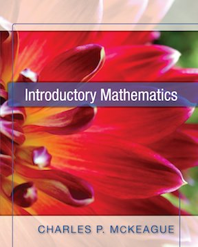 Introductory Mathematics   2010 edition cover