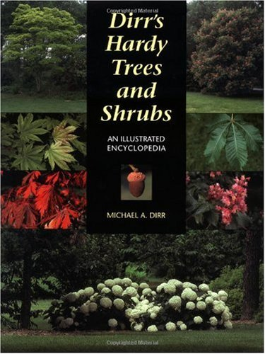 Dirr's Hardy Trees and Shrubs An Illustrated Encyclopedia  1997 edition cover