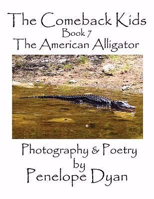 The American Alligator:   2008 9781935118046 Front Cover
