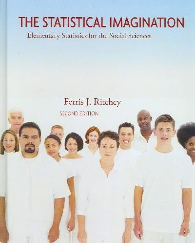 Statistical Imagination  2nd 2008 edition cover