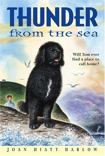 Thunder from the Sea   2005 edition cover