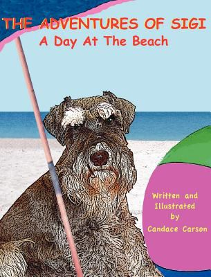 Day at the Beach   2009 9781937339050 Front Cover