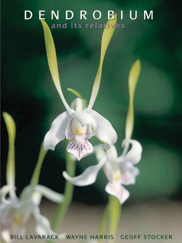 Dendrobium and Its Relatives   2000 (Revised) 9780881928051 Front Cover