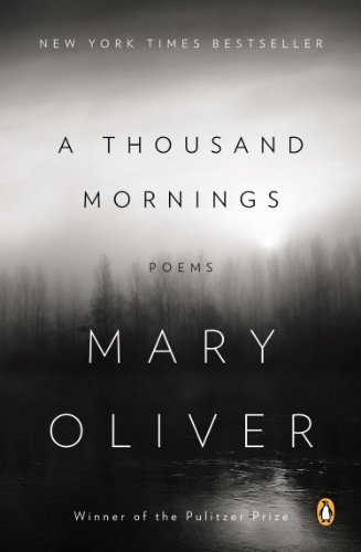 Thousand Mornings  N/A edition cover