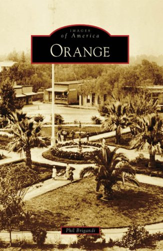 Orange   2008 9780738559056 Front Cover