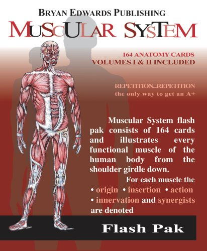 Muscular System Flash Pak N/A edition cover