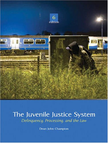 Juvenile Justice System Delinquency, Processing, and the Law 6th 2010 edition cover