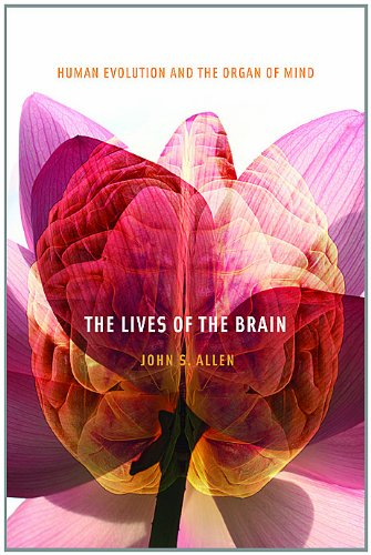 Lives of the Brain Human Evolution and the Organ of Mind  2009 9780674064058 Front Cover