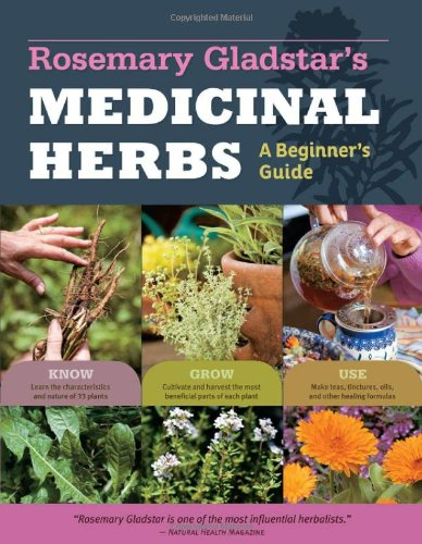 Medicinal Herbs A Beginner's Guide  2012 9781612120058 Front Cover