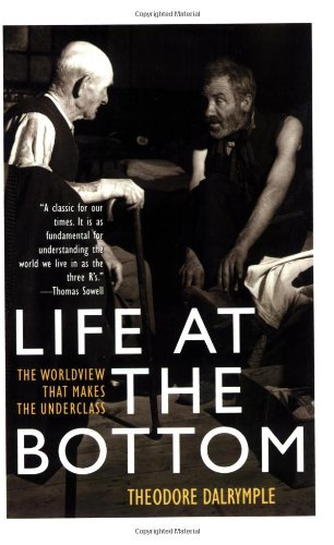 Life at the Bottom The Worldview That Makes the Underclass Reprint  edition cover