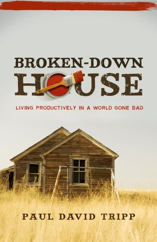 Broken down House Living Productively in a World Gone Bad N/A edition cover