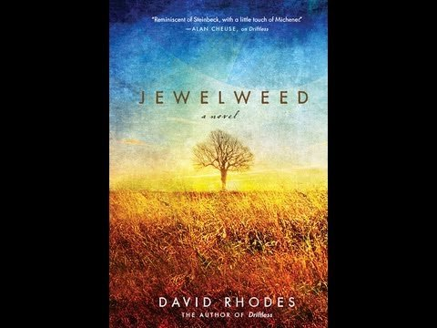 Jewelweed A Novel  2013 edition cover