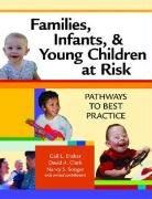 Families, Infants, and Young Children at Risk Pathways to Best Practice  2008 edition cover
