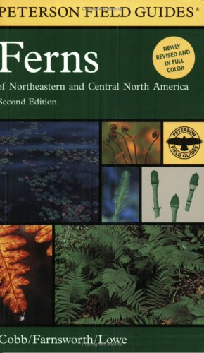 Peterson Field Guide to Ferns, Second Edition Northeastern and Central North America 2nd 2005 edition cover