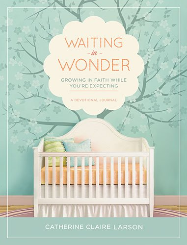Waiting in Wonder Growing in Faith While You're Expecting  2013 9781400321070 Front Cover