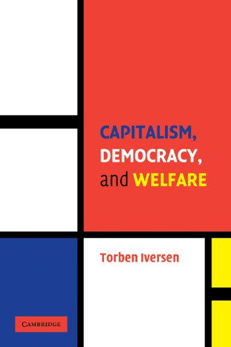 Capitalism, Democracy, and Welfare   2005 edition cover