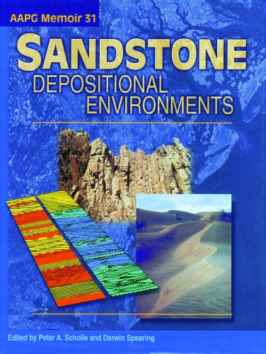 Sandstone Depositional Environments N/A edition cover