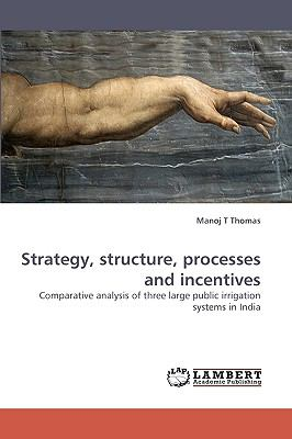 Strategy, Structure, Processes and Incentives N/A 9783838360072 Front Cover