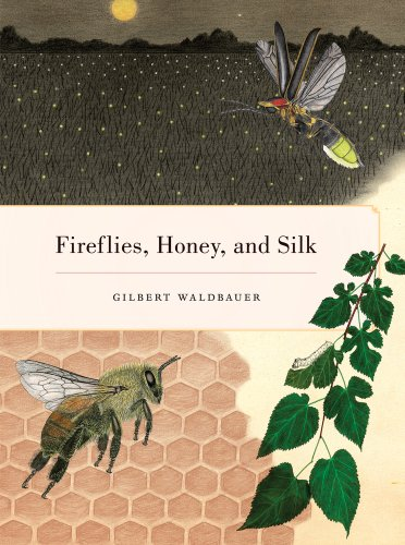 Fireflies, Honey, and Silk   2009 9780520268074 Front Cover