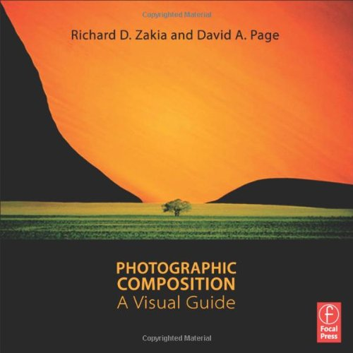 Photographic Composition A Visual Guide  2011 9780240815077 Front Cover